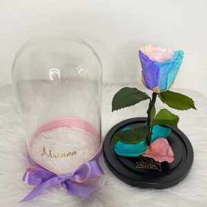 Preserved Rose Rainbow