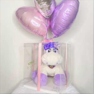 Adorable Plushie in a Box/Balloons